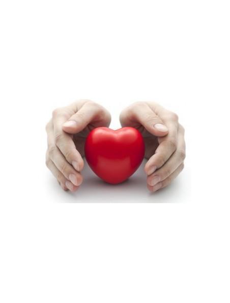 CordiaGEM GC04 Bio - Rythme cardiaque 50 ml - Herbalgem