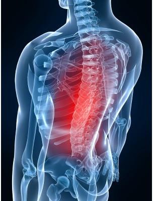 https://www.louis-herboristerie.com/7535-home_default/osteogem-gc13-bio-osteoporose-bourgeons-et-jeunes-pousses-50-ml-herbalgem.jpg