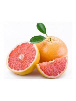 https://www.louis-herboristerie.com/7674-home_default/pepins-de-pamplemousse-bio-extrait-250ml-citrobiotic.jpg