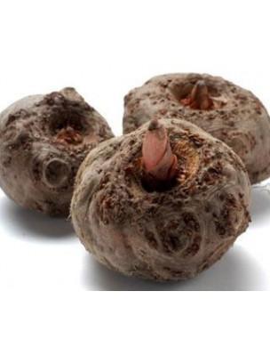 https://www.louis-herboristerie.com/7794-home_default/konjac-coupe-faim-120-gelules-purasana.jpg