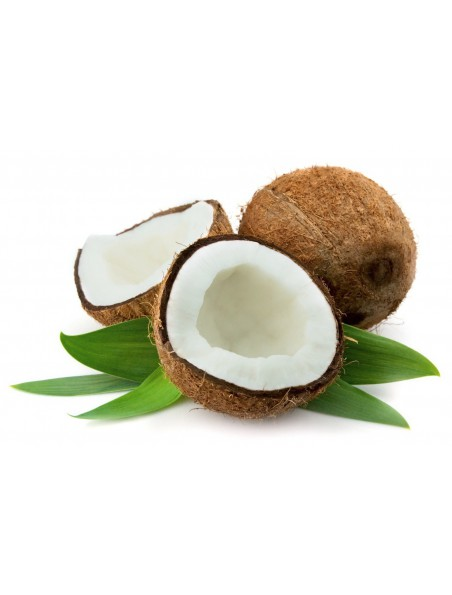 Huile de noix de coco Bio - Soin de la peau et des cheveux 500 ml - Purasana