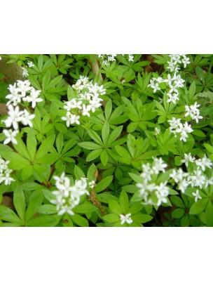 https://www.louis-herboristerie.com/8710-home_default/asperule-odorante-bio-partie-aerienne-coupee-100g-tisane-galium-odoratum-l-scop.jpg
