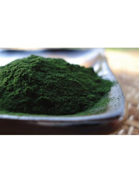 Chlorella en poudre Bio - SuperFoods 200 grammes - Purasana