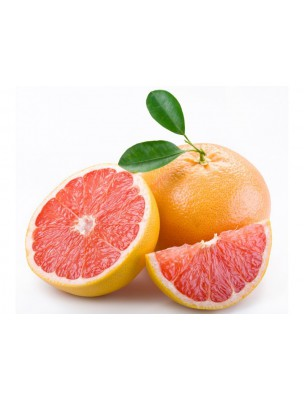 https://www.louis-herboristerie.com/9441-home_default/dentifrice-gel-orange-pamplemousse-bio-pratique-et-efficace-300-ml-naturado.jpg
