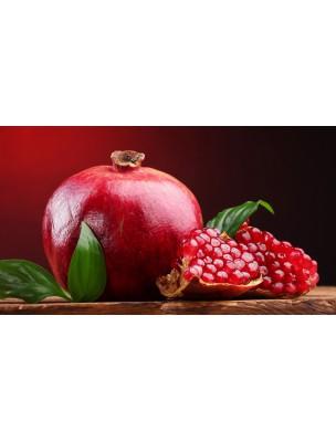 https://www.louis-herboristerie.com/9467-home_default/dentifrice-bio-neem-et-grenade-150-g-himalaya.jpg