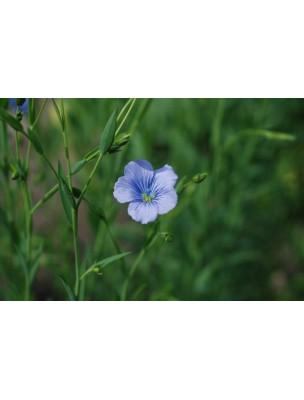 https://www.louis-herboristerie.com/9483-home_default/lin-bio-graines-400g-tisane-de-linum-usitatissimum-l.jpg