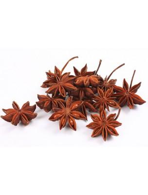 https://www.louis-herboristerie.com/9522-home_default/anis-etoile-badiane-bio-fruit-concasse-100g-tisane-d-illicium-verum-hook-f.jpg