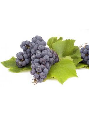 https://www.louis-herboristerie.com/9694-home_default/marc-de-raisin-bio-poudre-100g-tisane-vitis-vinifera-l.jpg