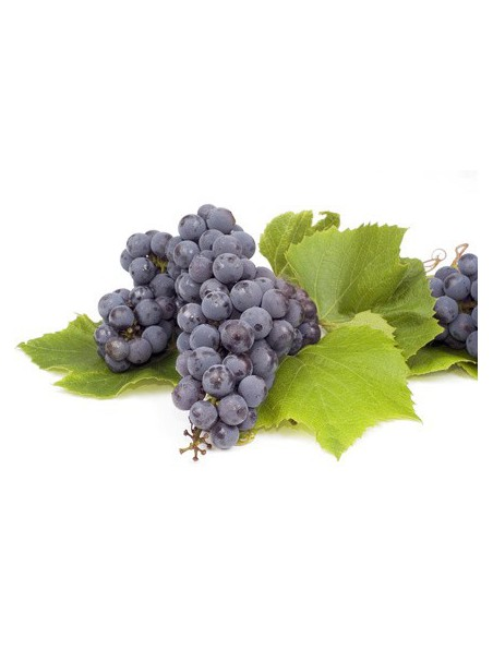 Marc de Raisin Bio - Poudre 100g - Tisane Vitis vinifera L.