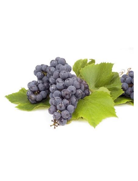 Marc de Raisin Bio - Poudre 100g - Vitis vinifera L.