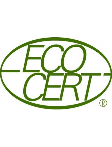 Bouleau Bio - Ecorce 100g - Betula pendula Roth