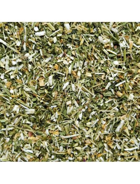 Partenelle (Grande camomille) Bio - Partie aérienne coupée 100g- Tanacetum parthenium (L.) Sch.