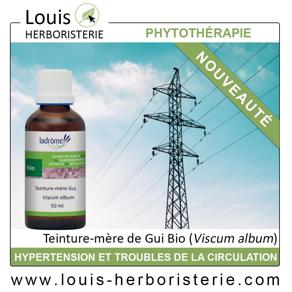 La teinture mère de Gui Viscum album pour lutter contre l'hypertension est disponible à l'herboristerie Louis