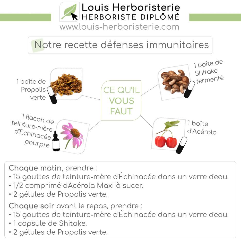Découvrez ma sélection de plantes réputées pour stimuler naturellement vos défenses immunitaires !
