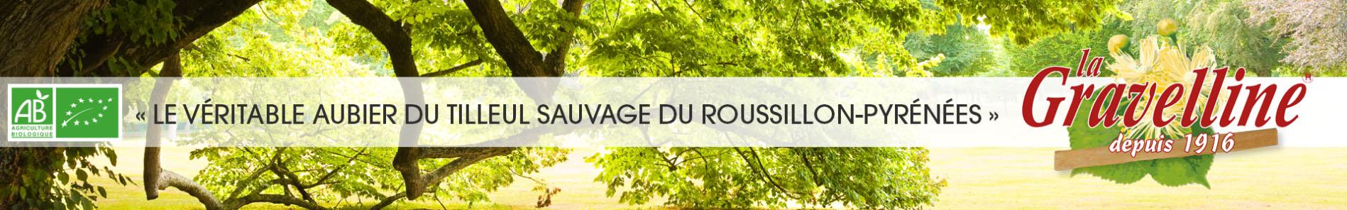 Découvrez le véritable aubier de Tilleul du Roussillon la Gravelline, disponible à l'herboristerie Louis