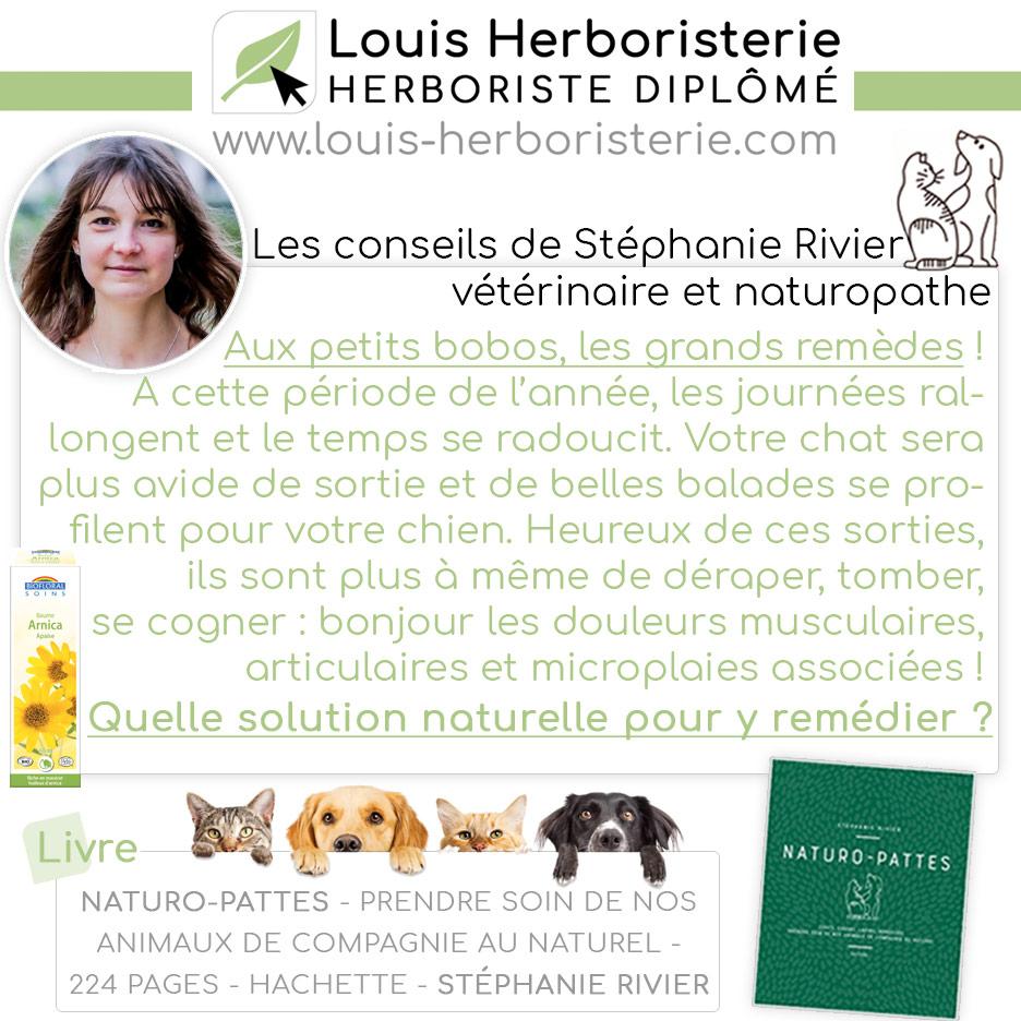 Les conseils de Stéphanie Rivier naturo-pattes