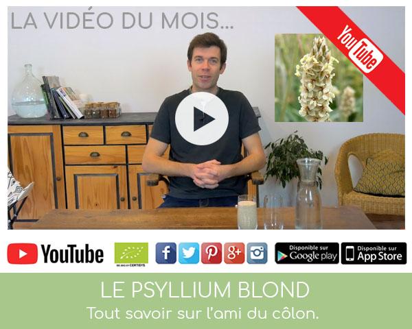 Vidéo sur le psyllium blond par Louis Herboristerie